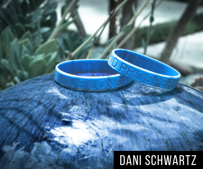 INTERVIEW: Dani Schwartz